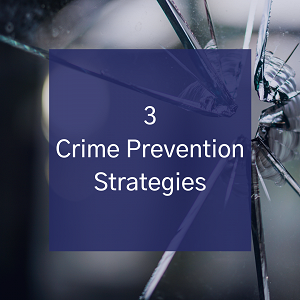 3 Crime Prevention Strategies