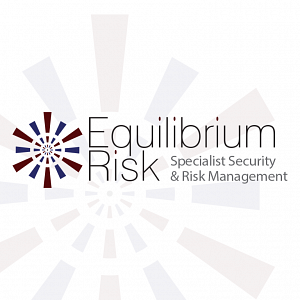 What does Equilibrium Risk mean?