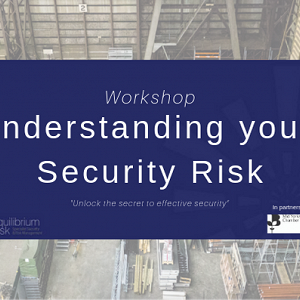 More Workshop Success for Equilibrium Risk
